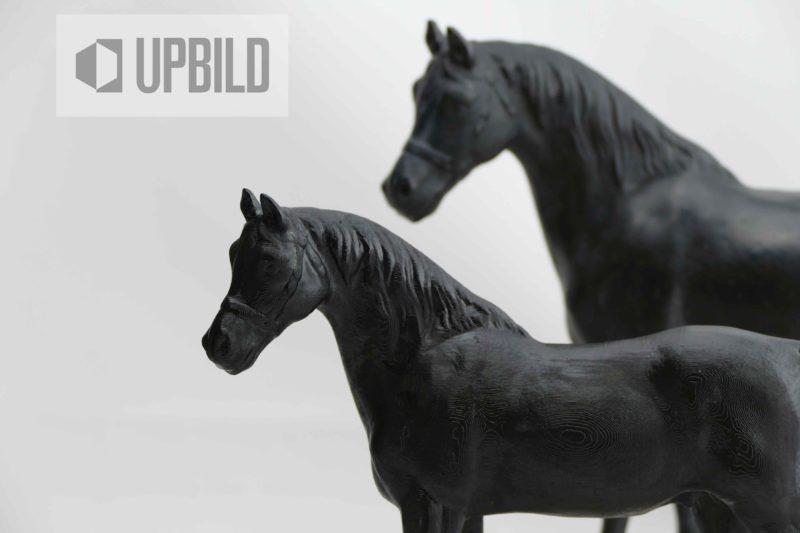 Helene das Pferd von König Friedrich 1